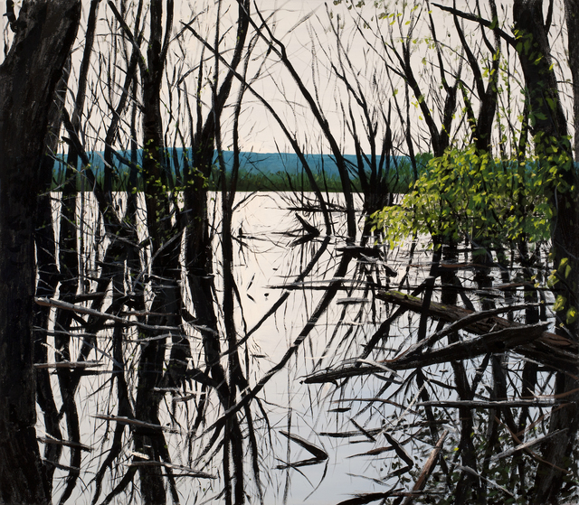 Michael Brophy, 'Shallow Lake I', 2019, Russo Lee Gallery