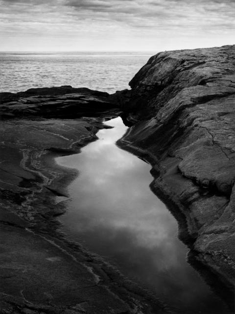 , 'Shoals - Rock Pool #7,' , Pucker Gallery