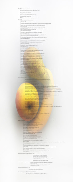 , 'Image Transfer 'Banana, Apple and Pear Image Transfer',' 2012, Martin van Zomeren