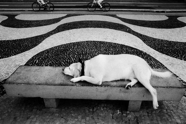 Kitty Paranaguá, 'Untitled', 2002/11, Photography, Pigment on cotton paper, Janaina Torres Galeria