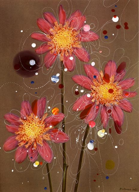 , 'Anemone-Flowered Dahlia Siemen Doorenbos,' 2015, Edwynn Houk Gallery