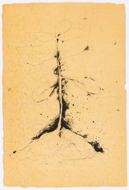 , 'The Plant Becomes a Fan #1 - #5,' 1975, Graphicstudio USF