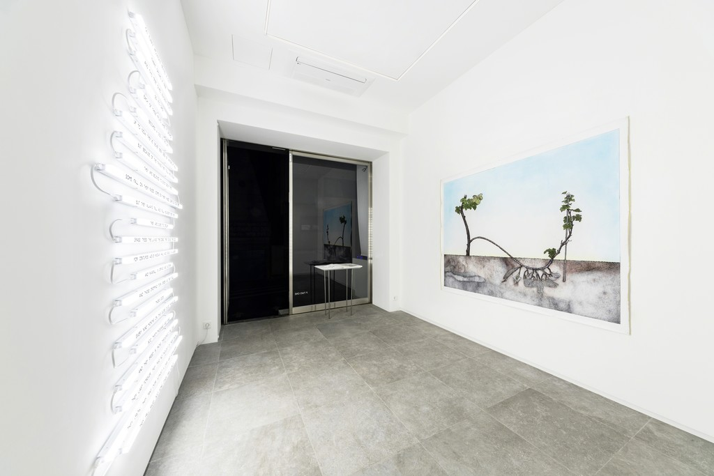 Installation view: Fahrettin Örenli, Nature of Me, P21 (28 February–31 March 2018). Courtesy P21.