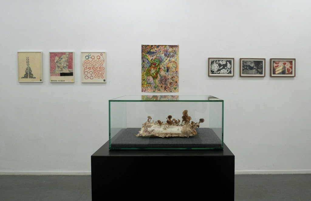 Left to right: three St. Paul series works on paper by Martin Assig, Sebastiaan Schlicher's drawing Chronic Hysteresis, two drawings and one watercolour by Marcel van Eeden. On the pedestal Zeger Reyers' book prepared with oyster mushrooms.