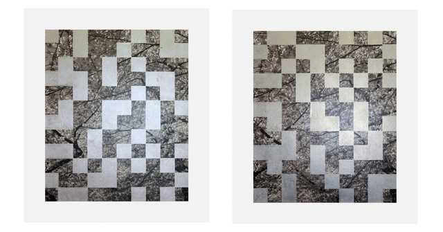 , 'Cherry Tree Grid 003 (diptych),' 2015, James Harris Gallery