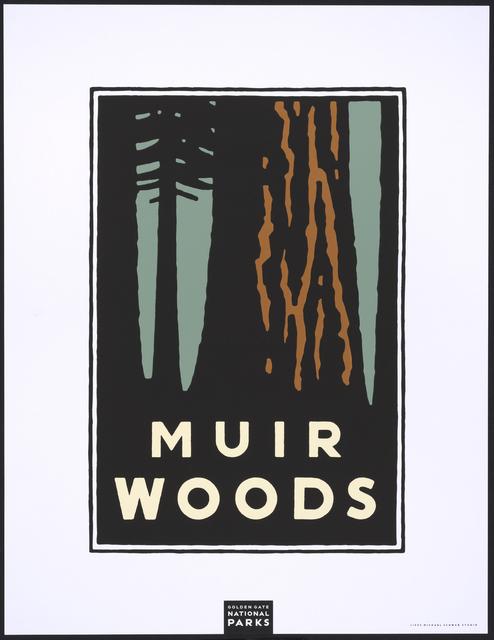 , 'Muir Woods,' 1995, Legion of Honor
