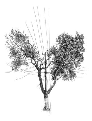 , 'Árvore nº 3,' , Galeria Virgilio