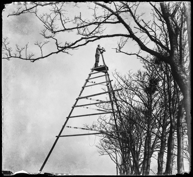 , 'The Summit of Bird Photography, Sloten,' 1933, Nederlands Fotomuseum