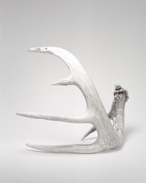 , 'Seneca Horns ,' 2016, METRONOM