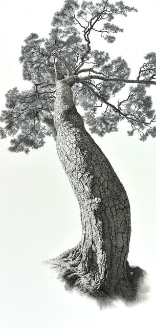 , 'Auspicious Pine Tree 3,' 2014, Leehwaik Gallery