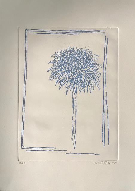 Carlo Battaglia, 'Girasole', 1981, Print, Etching, aquatint in colors on Arches paper, NCAG