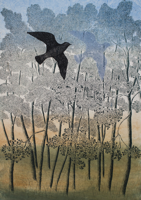 , 'The Shadow of the bird,' 2015, Himmelblau Printmaking Finland