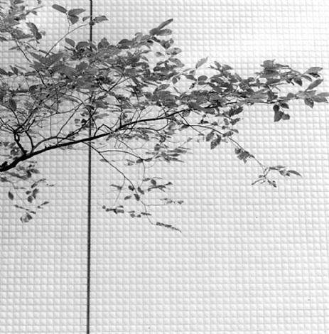 Frauke Eigen, 'Nishidai, Japan', 2006, Atlas Gallery