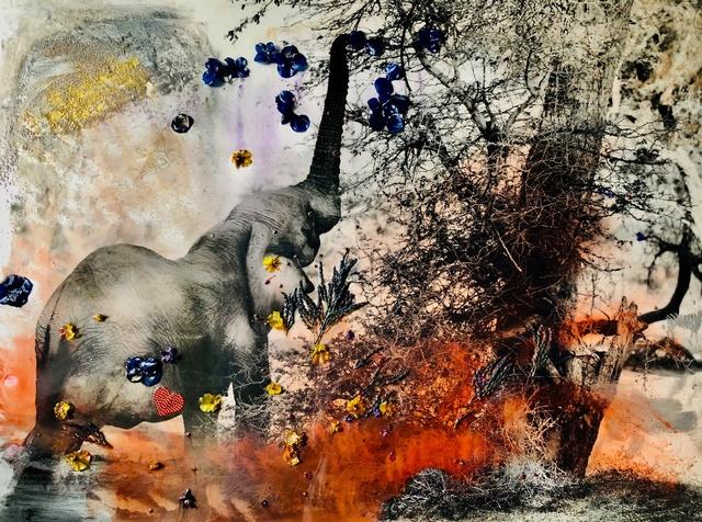 , 'Damaraland Elephant Heart,' 2018, Isabella Garrucho Fine Art