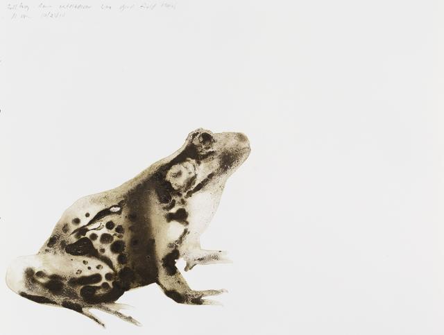 , 'Bullfrog (Rana catesbeiana),' 2014, Parrish Art Museum
