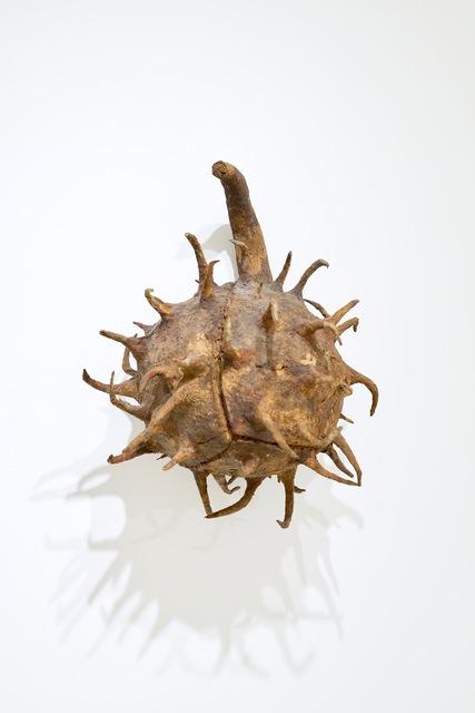 Ming Fay 費明杰, 'Buckeye Seed', 1985, Sapar Contemporary