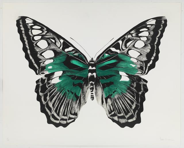 , 'Butterfly Green Silkscreen,' , Sladmore