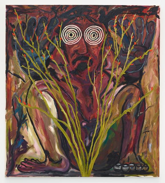 , 'Hiding in Ocotillo,' 2017, Diane Rosenstein