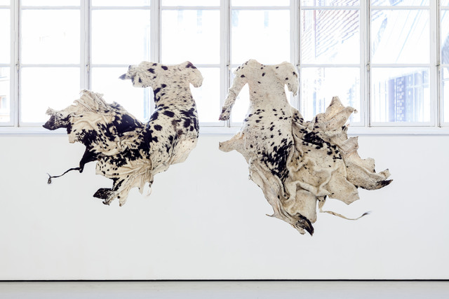 , 'Titfunti emkhatsini wetfu (The shadows between us),' 2013, Andréhn-Schiptjenko