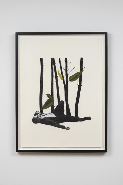 Jakob Kolding, 'The Trees', 2015, Team Gallery