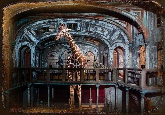 , 'Requiem for a Giraffe,' 2016, Afterimage Gallery