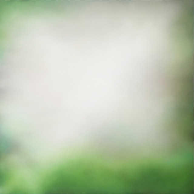 , 'Redwoods (2),' 2018, Winston Wächter Fine Art