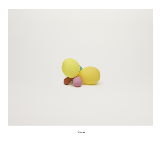 , 'Pigeons,' 2013, Taik Persons