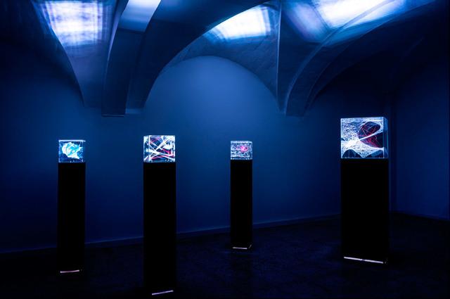 , 'Installation,' 2015, N2 Galería