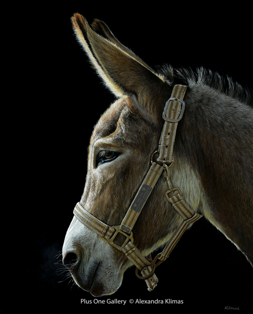 , 'Hope the Donkey,' 2018, Plus One Gallery