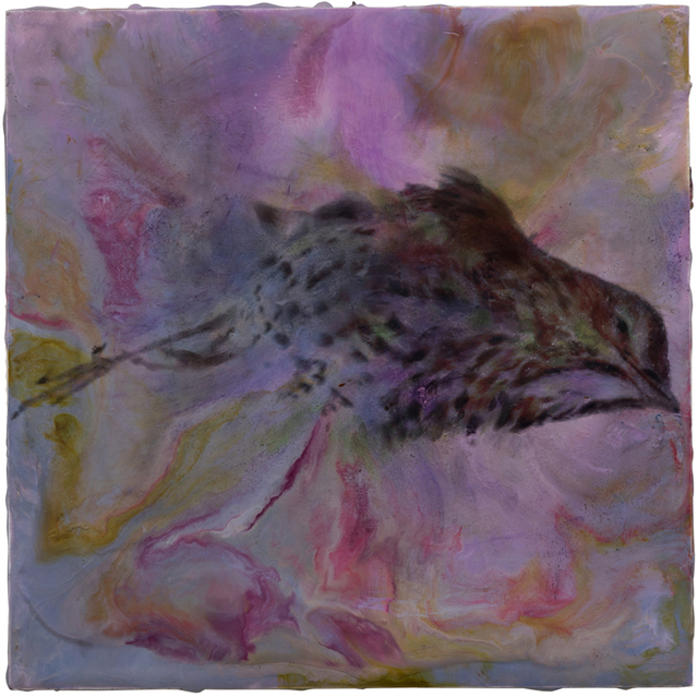 , 'Wood Thrush,' 2016-2017, Harper's Books