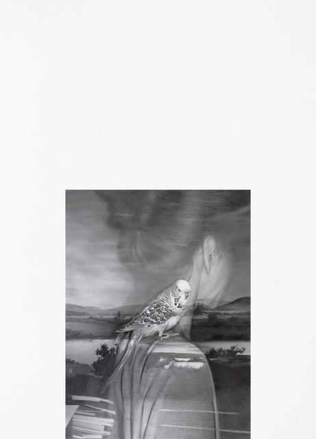 , 'Die Umkehr 005,' 2017, Suzanne Tarasieve