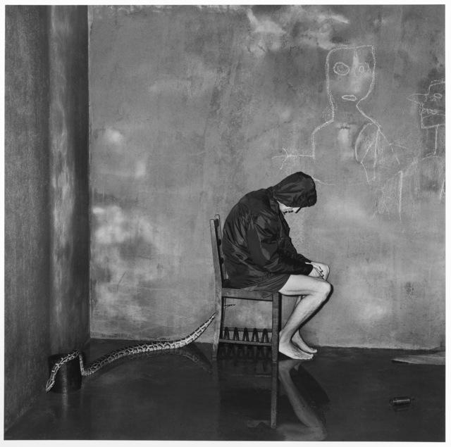 Roger Ballen, 'Bitten', 2004, Galeria Senda