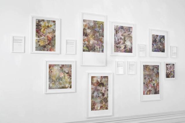 , 'Untitled,' 2014, Andersen's