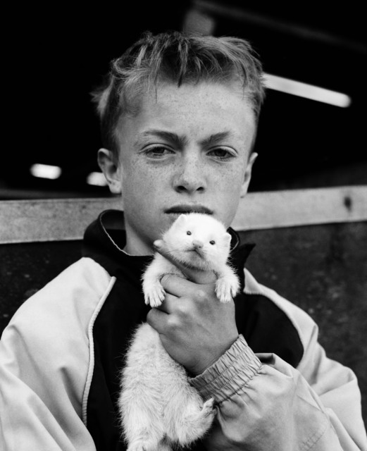, 'Boy with ferret, County Durham,' 2002, The Photographers' Gallery