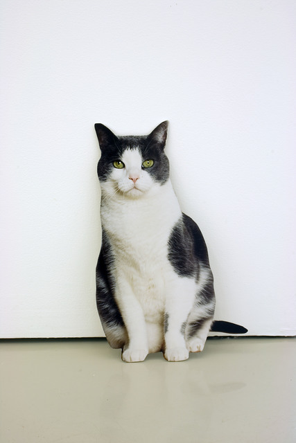 , 'Domestic Cat,' 2009, Contemporary Arts Museum Houston