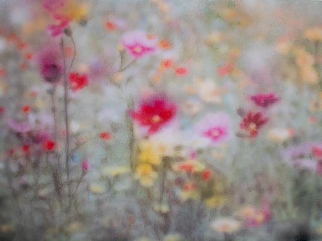 , 'Flower Symphony #8,' 2019, Le Salon Vert