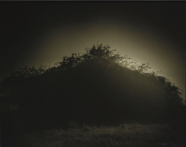 Sally Mann, 'Untitled (Deep South #39)', 1998, Sotheby's