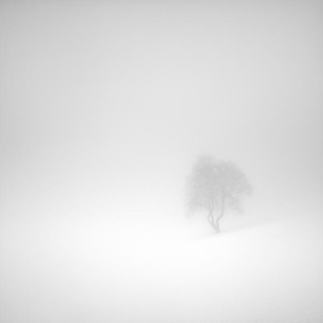 , 'Il miraggio dell'inverno,' 2013, Galleria Valeria Bella