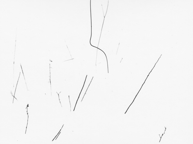 , 'Grasses in Snow, Detroit,' 1943, Pace/MacGill Gallery