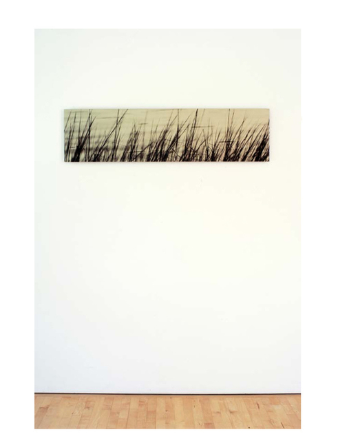 , 'Deep Creek Grass,' 1999, Marcia Rafelman Fine Arts