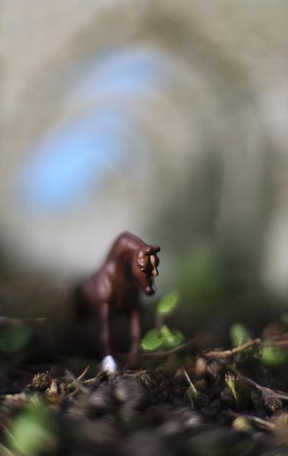 , 'Roman Horse,' 2009, InLiquid
