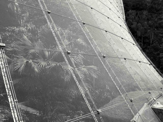 , 'Atrium of the Birds, Hong Kong - 2008,' 2008, Contemporary by Angela Li