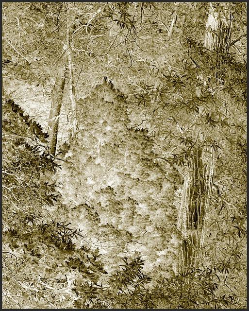 , 'Harmonium V,' 2007, MASS MoCA