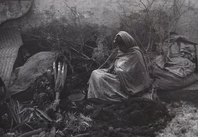 Ellen Auerbach, 'Queretaro, Mexico, Xmas Market', 1955, Scheinbaum & Russek Ltd.