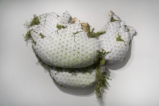 Carrie Gillen, 'Encroach', 2018, Springfield Art Association