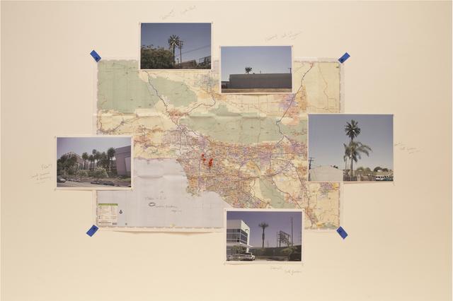, '5 Palms of L.A. (Herbario de plantas artificiales). Expedición CA,' 2012, Instituto de Visión
