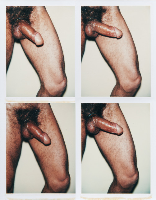 Andy Warhol, 'Andy Warhol, Group of Four Polaroid Photographs from the 'Sex Parts and Torsos' Series, 1977', 1977, Hedges Projects