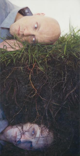 Robert and Shana ParkeHarrison, 'Bloodroot', 2008, Slete Gallery