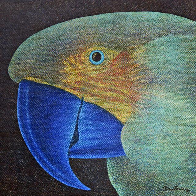 , 'Papagaio,' 1980, Arte Fundamental
