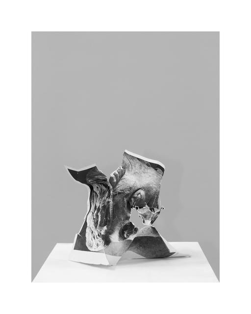 Nicolas Lamas, 'Damnatio memoriae #5', 2013, Meessen De Clercq